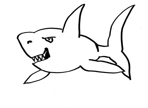 rekin